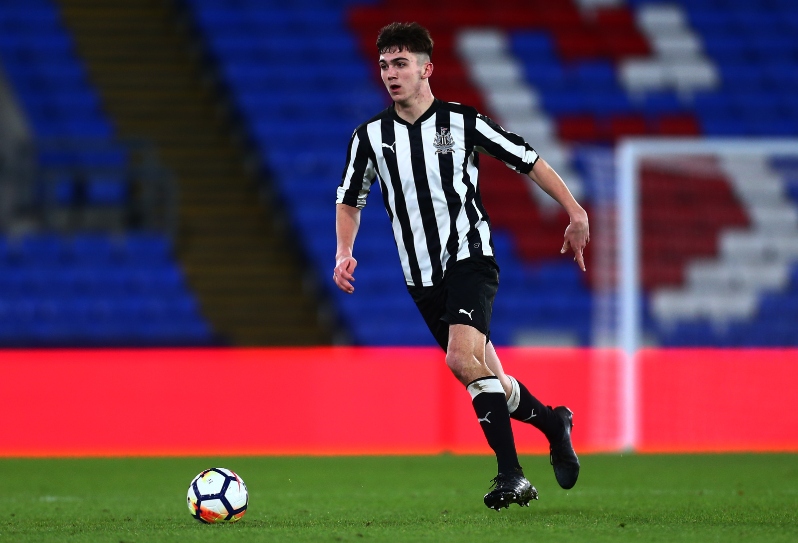 Clark's injury gives McEntee a chance to impress the Newcastle staff